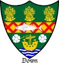Click for larger image. Down Northern Ireland coat of arms